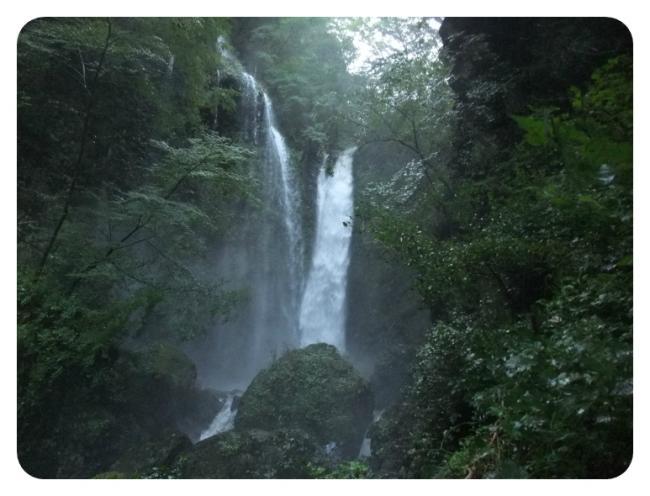 2011_0920福井遠征1474