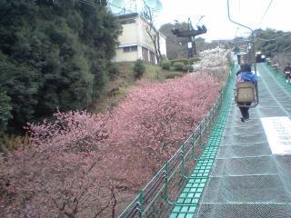 松山城03