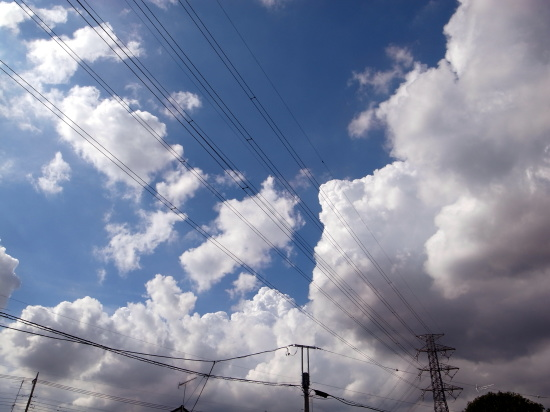 20110911_5.jpg