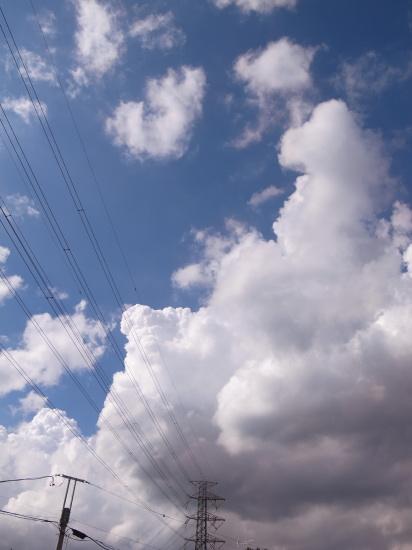 20110911_6.jpg