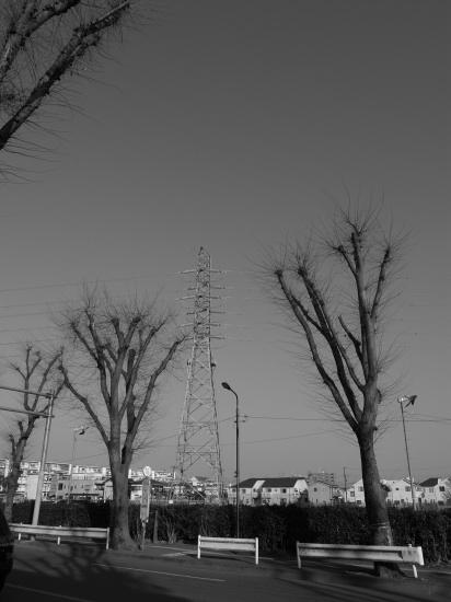 20111230_1.jpg