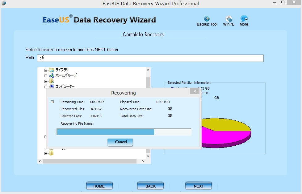 データ復元 EaseUS Data Recovery Wizard Professional9