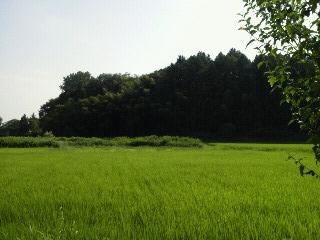 fuku実家1