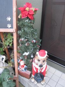 2010クリスマス (3)