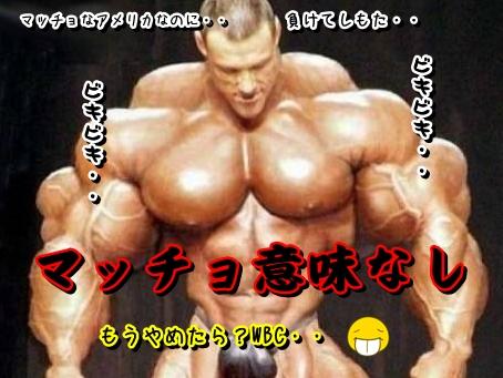 Baidu IME_2013-3-17_8-27-25