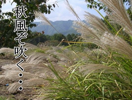 Baidu IME_2013-8-14_23-34-18