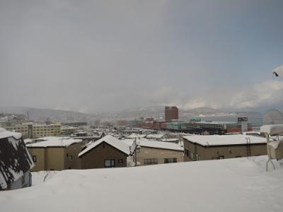 雪積もりました!
