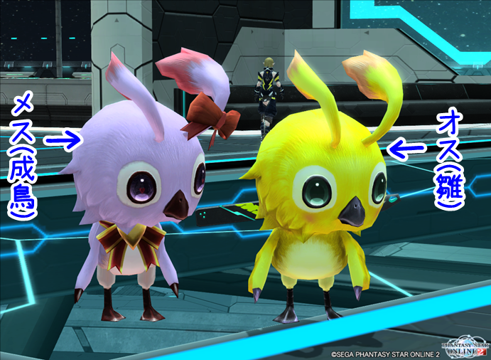 pso20141028_210711_022.png