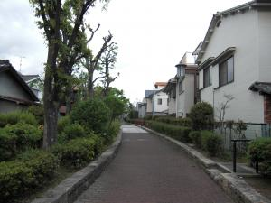 平野3_convert_20100221131651