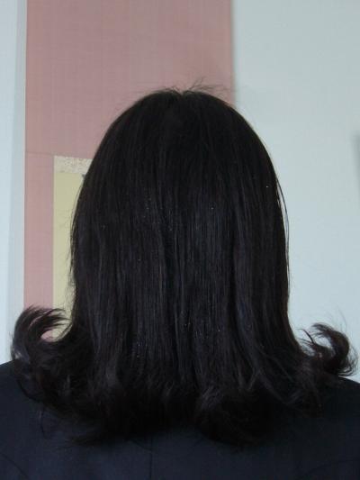 髪の毛_convert_20110404213614