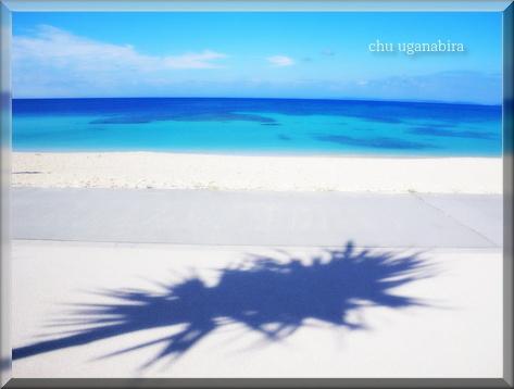 南の島の1shot