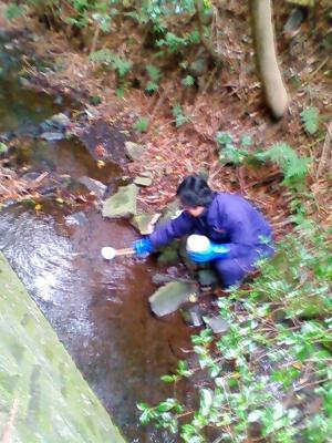 水質調査 1