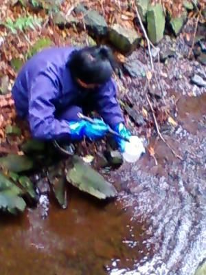水質調査 2