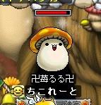 卍苺るる卍という名のry