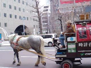 北海道旅行!(2010.04.25-02)