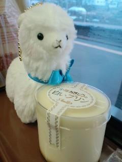 北海道旅行!(2010.04.24-06)