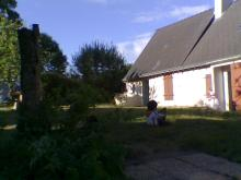 新宅の庭で遊んでもらってる