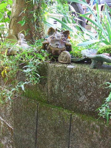 2011_05102011益子取材NHK0174ブログ用