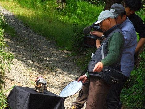 2011_05102011益子取材NHK0181ブログ用