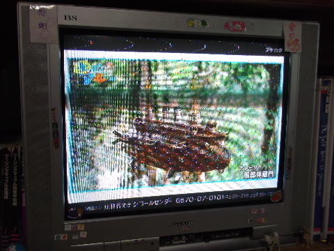 人生の転機 NHK土曜マルシェ 006