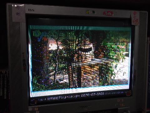 人生の転機 NHK土曜マルシェ 005