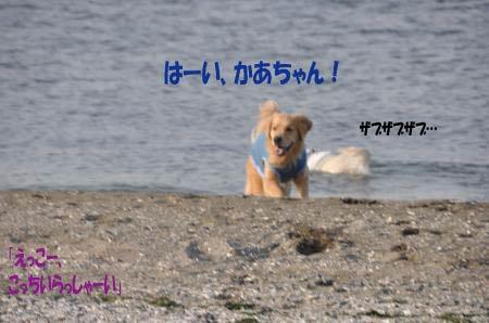 asaumi-12.jpg