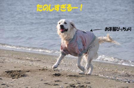 asaumi-17.jpg