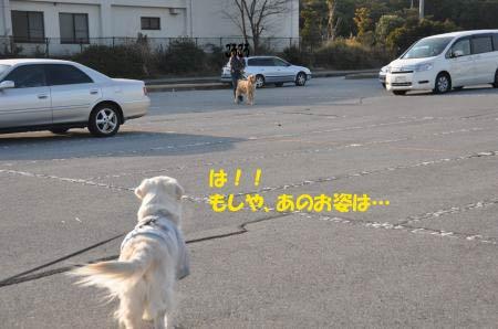asaumi-2.jpg