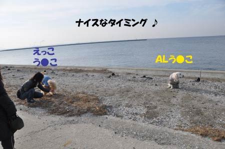 asaumi-24.jpg