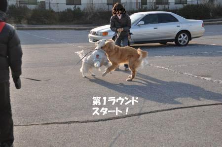 asaumi-5.jpg