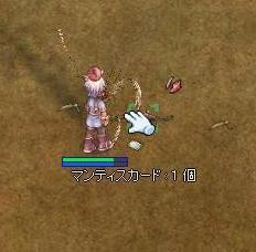 2010101101.jpg