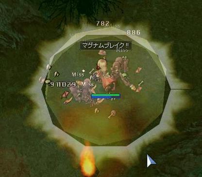 2011052407.jpg