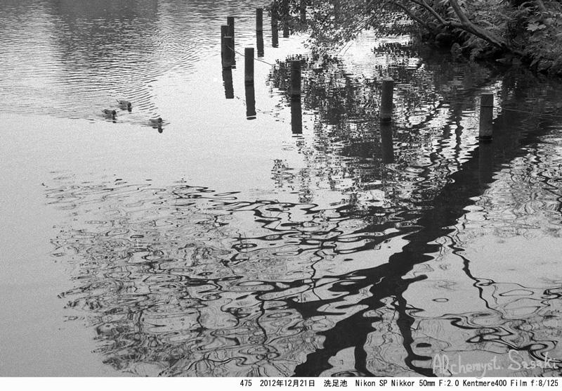 水辺の光景-1