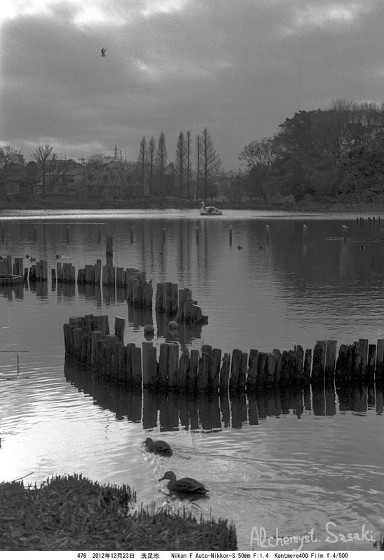 水辺の光景-2
