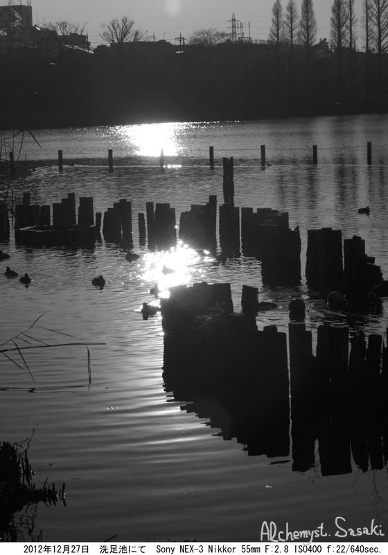 水辺の光景-3