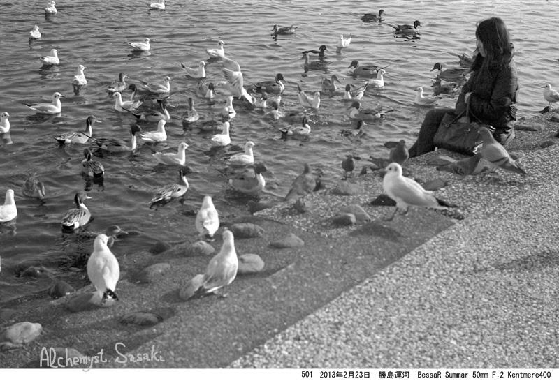 鳥501-15