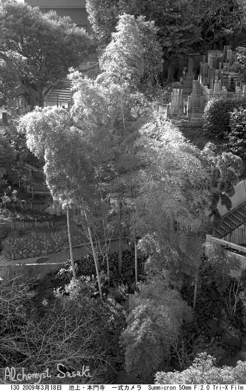竹130-11