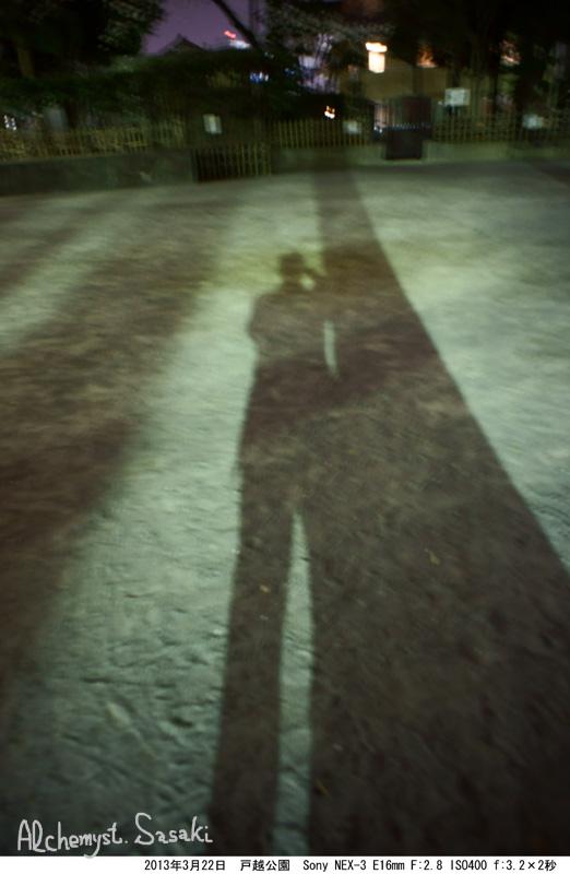 夜の戸越公園DSC04990