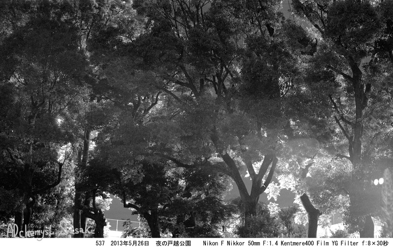 夜の戸越公園537-2