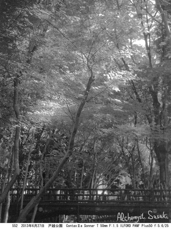 戸越公園552-9