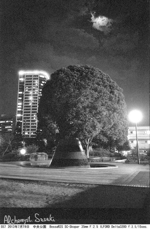 NightWalk(2)557-1.jpg