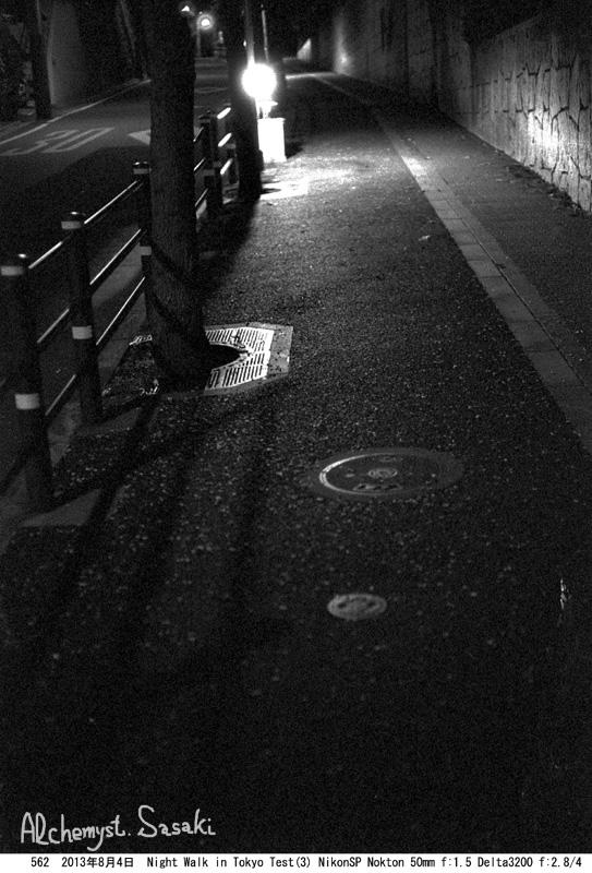 NightWalk(3)562-1.jpg