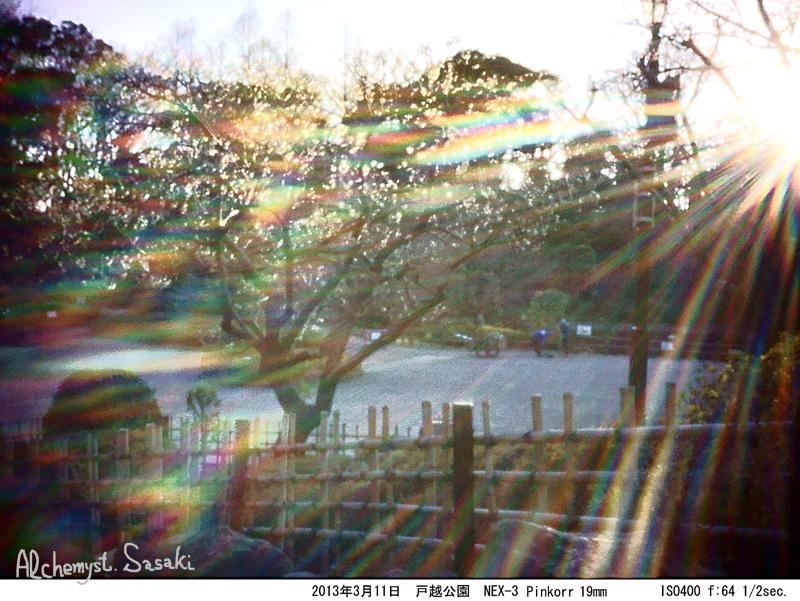 PinkkkorDSC04154.jpg
