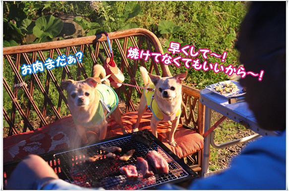 018ONIKUHAYAKU.jpg