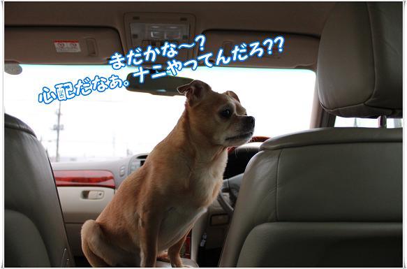 030madakana.jpg