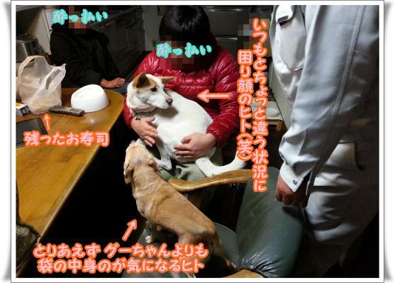 2013-3-2-3komarigao.jpg