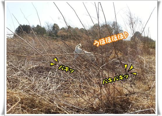 2013-3-9-2uhohohoho.jpg