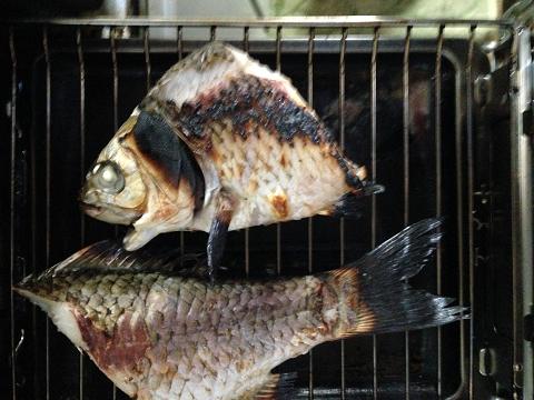 魚焼きグリルで、軽く焦げ目がつく程度に焼く