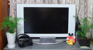 TVはSONY製。32型。