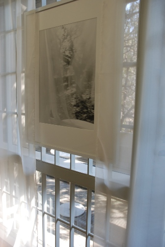 カーテンの窓辺